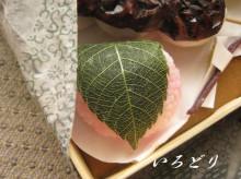 カービング☆☆ 生活に彩りを-お花見団子、桜餅